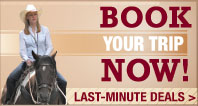 Book Your Equestrian Vacation