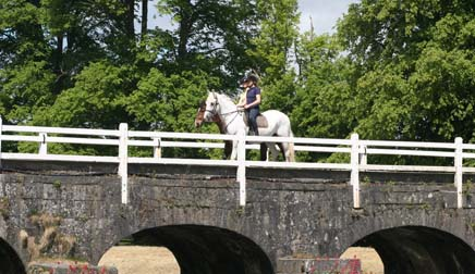 Mount Juliet Bridge