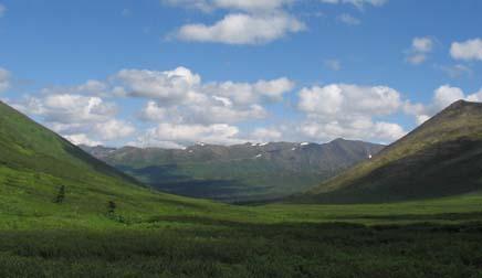 Alaska Horse Pack Trip