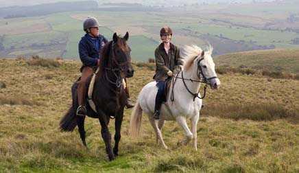 Wales horse riding
